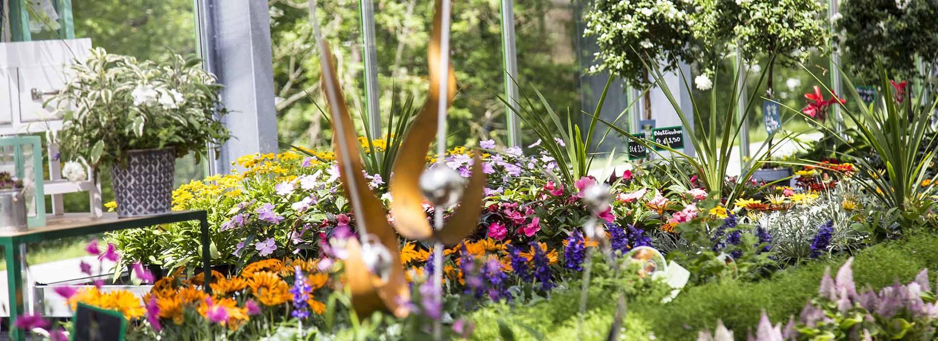 Individuelle Garten und Terrassengestaltung bei Blumen Bachhubers Florale Welten in Zwiesel