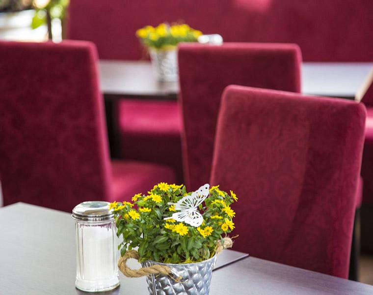 Erholung im Café Gloria bei Blumen Bachhubers Florale Welten in Zwiesel